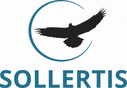 e-Sollertis Oy