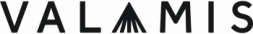 Valamis logo