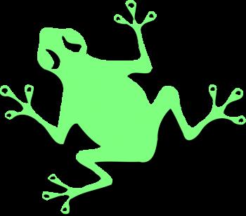 Chainfrog logo